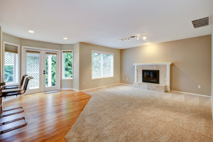 Living room carpet cleaning job fort wayne